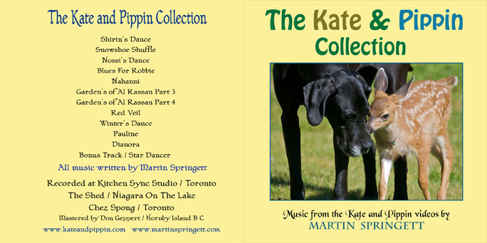 K and P C D cover copy